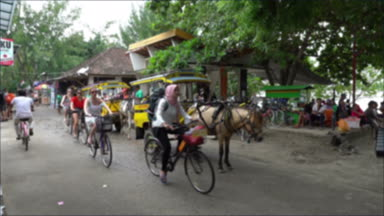 eco tourism horse wagons on natural ecological islands in indonesia gili trawangan travel