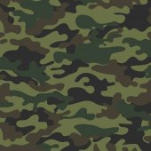 picture with a military color of the ground  khaki