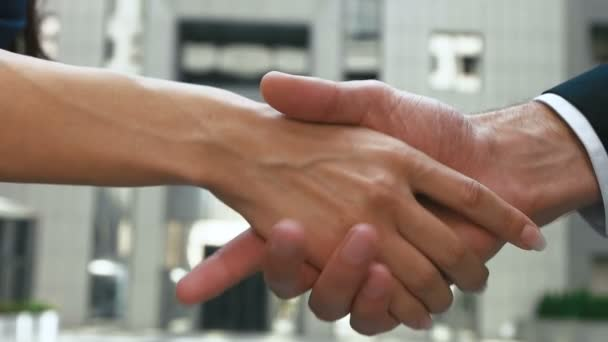 partners shaking hands