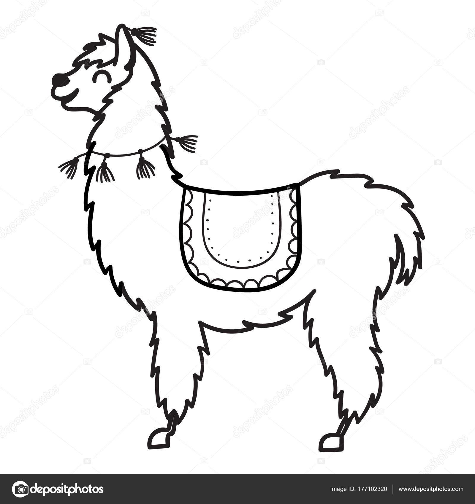 Imágenes Con Caracter Ilustración De Vector Lama De Lindo