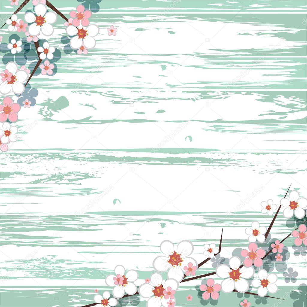 hello spring frame. border for seasonal greetings. light wooden background. soft spring flowers. pink and white blossom. vector spring frame for text