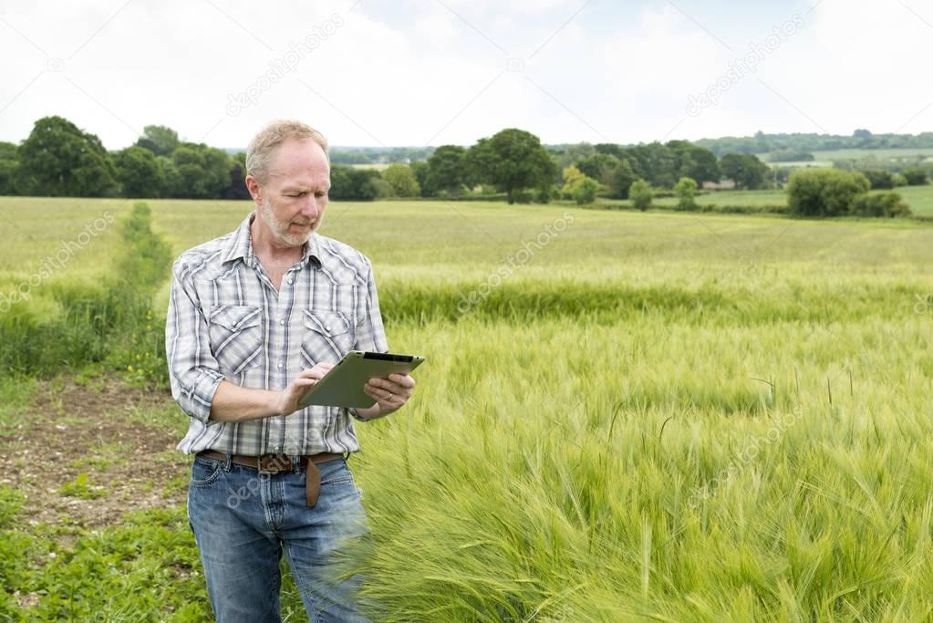 Man Looking on a Tablet Computer in a Wheat Field