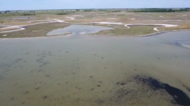 Aerial shot of the Black Sea shoal with weeds, sandy coast, pools, and wetland