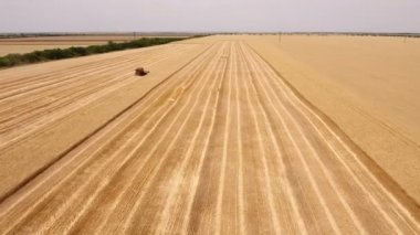 Aerial shot of a large combine harvester finishing reaping wheat on a huge field