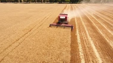 Aerial shot of a combine harvester gathering  wheat crop in Eastern Europe