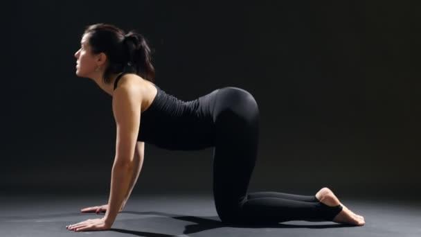 junge Frau steht auf Vieren auf ihrer Matte bei einem Yoga-Katzen-Asana in einer dunklen Turnhalle und bietet einen beeindruckenden Blick auf eine schlanke Frau, die auf ihren Vieren steht, während sie ihr Yoga-Katzen-Asana in einer dunklen Turnhalle praktiziert. sie atmet tief ein und aus