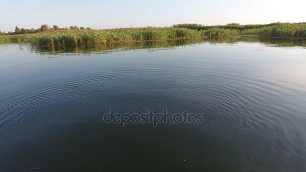 Légi felvétel, a Dnipro-folyó halászati kacsa, a szikrázó naplemente nyáron gyönyörű kilátás nyílik a Dnipro-folyó és a búvár kacsa. A bank foltok a sás és a nád borítja, nyáron csodálatos naplementekor