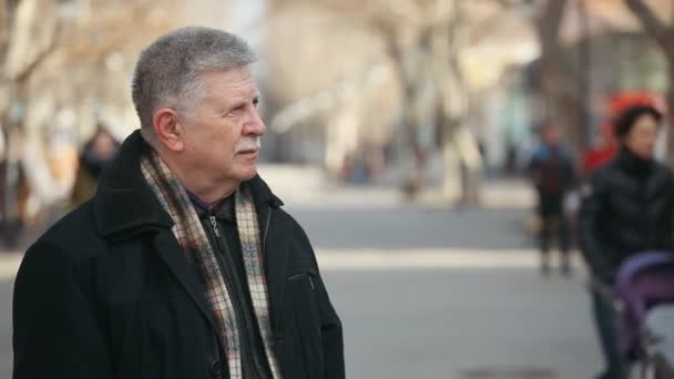 Šedovlasý starší muž s kostkovaná šála vypadá stranou v uličce na podzim vzrušující pohled odvážný šedovlasý muž v černém kabátku, kostkované černou a bílou šálu stojící v uličce parku za slunečného dne