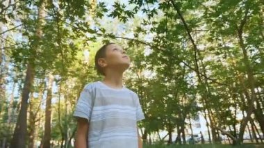 A delighted boy looks up and stands on a pathway in a green park at sunset in slo-mo                                       A 180 degree closeup of a nine year boy looking up standing in a wonderful park in summer in slow motion. He looks charmed