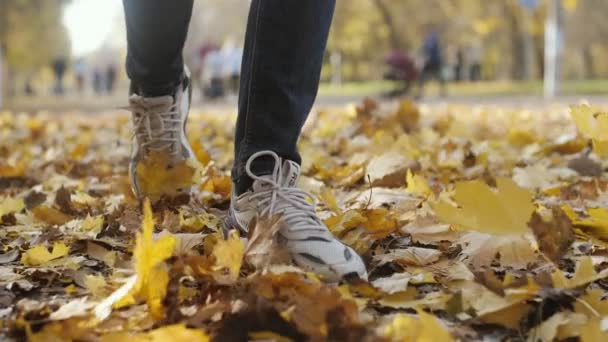 Kiev, Ukraine - October 21, 2019:Gorgeous closeup of young male legs in modern sneakers rustling and walking in a beautiful park with many orange leaves on a sunny day in autumn in slow motion