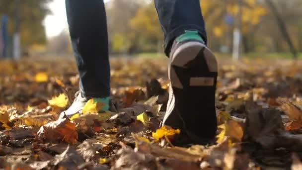 Manželské nohy procházky a šustění s pomerančovými listy v parku na podzim v slo-mo Vzrušující detailní záběr mladých mužských nohou v moderních trenérech šustění a turistika v krásném parku s mnoha zrezivělých listů za slunečného dne na podzim ve zpomaleném filmu