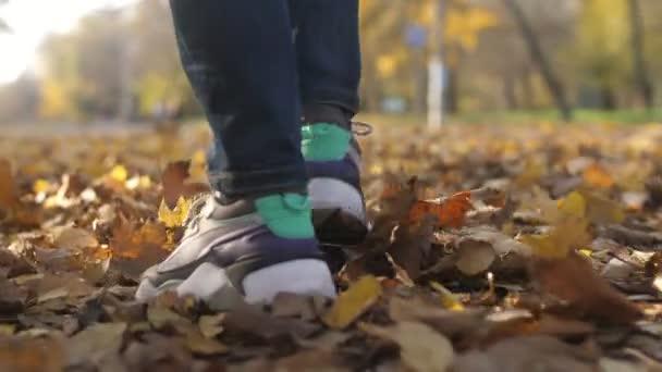 Férfi lábak sétáló és susogó sárga levelek egy parkban ősszel slo-mo Lenyűgöző közelkép fiatal férfi lábak modern tornacipő susogó és séta egy festői parkban sok rozsdás levelek egy napsütéses napon ősszel slo-mo