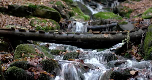 Vodopád v lese podzim hory s žluté listy a mechem obrostlými skalami