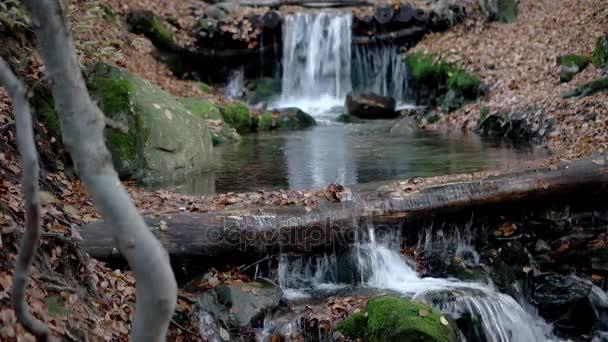 Malý vodopád v lese podzim hory s žluté listy a mechem obrostlými skalami