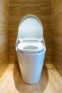 Toilet bowl and interior decoration., Architecture design.
