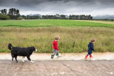 Boys having fun splashing after the rain with dog