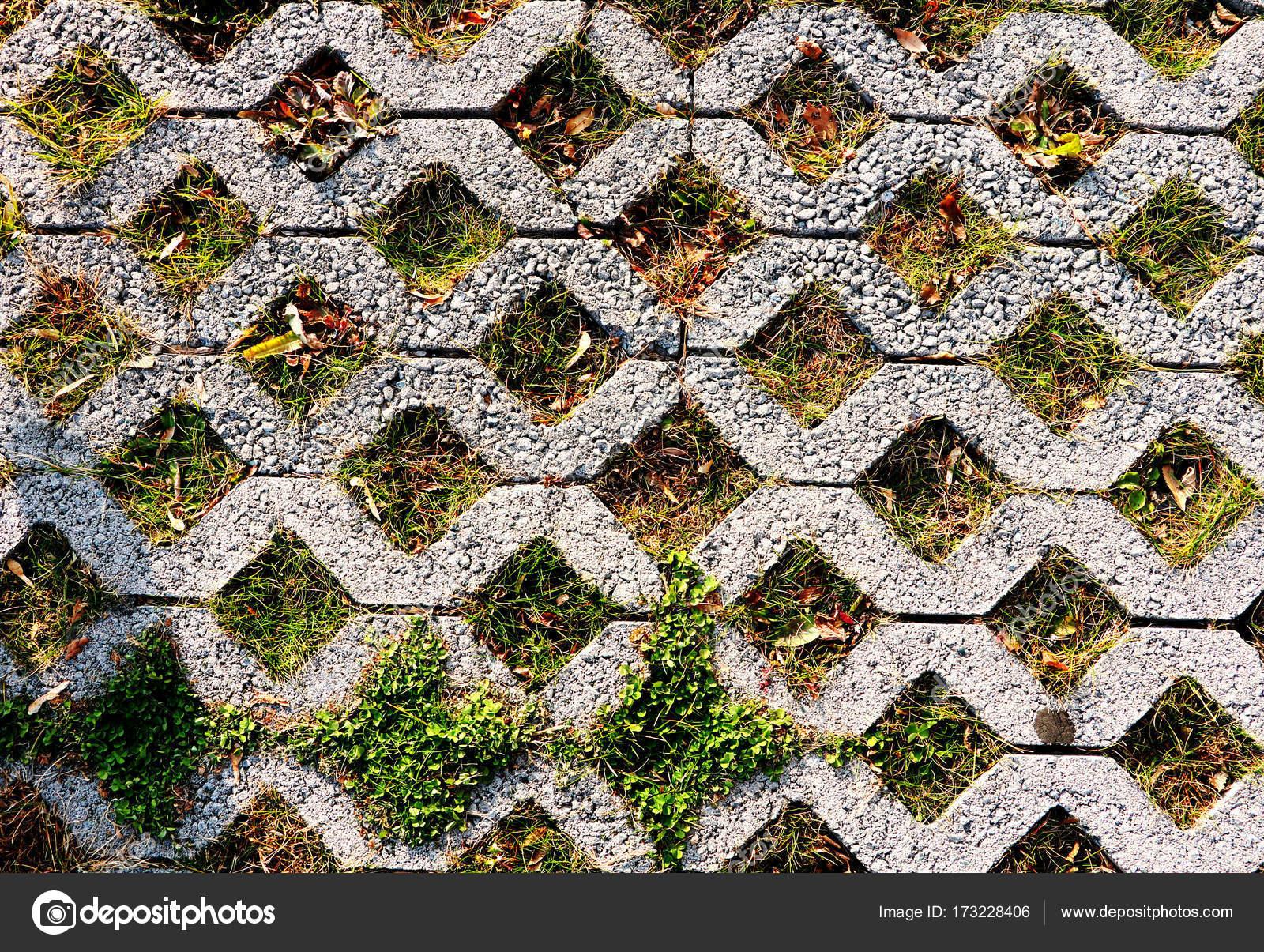 Groene parkeren patroon van vierkant cement tegels van de vloer