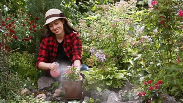 kertész permetező víz a virágok