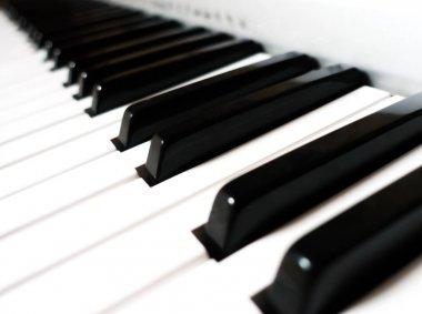Close up of piano keys.