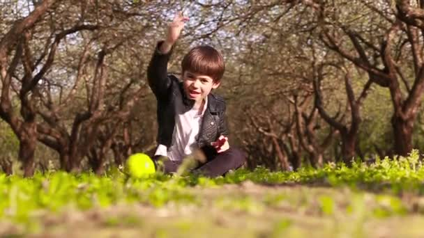 A little boy sits on the ground in an apple orchard and rolls a green apple into the camera. Slow motion video