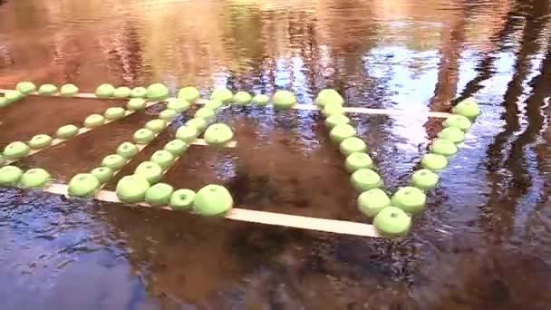 The inscription of green apples floats along the river. Warm sunny weather.
