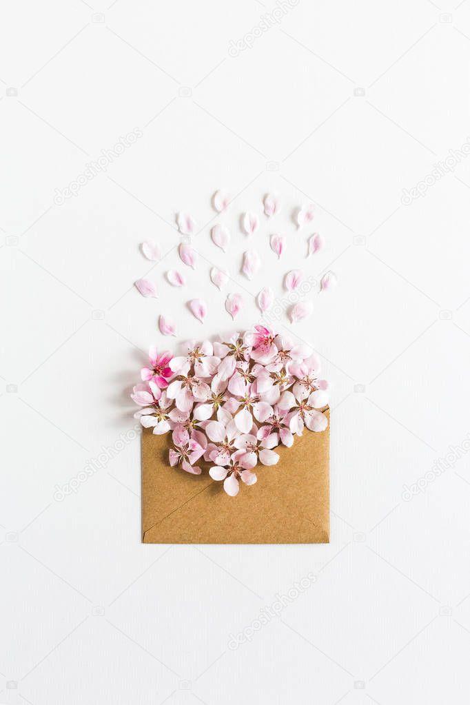 opened craft paper envelope full of spring blossom sacura flowers on white background.