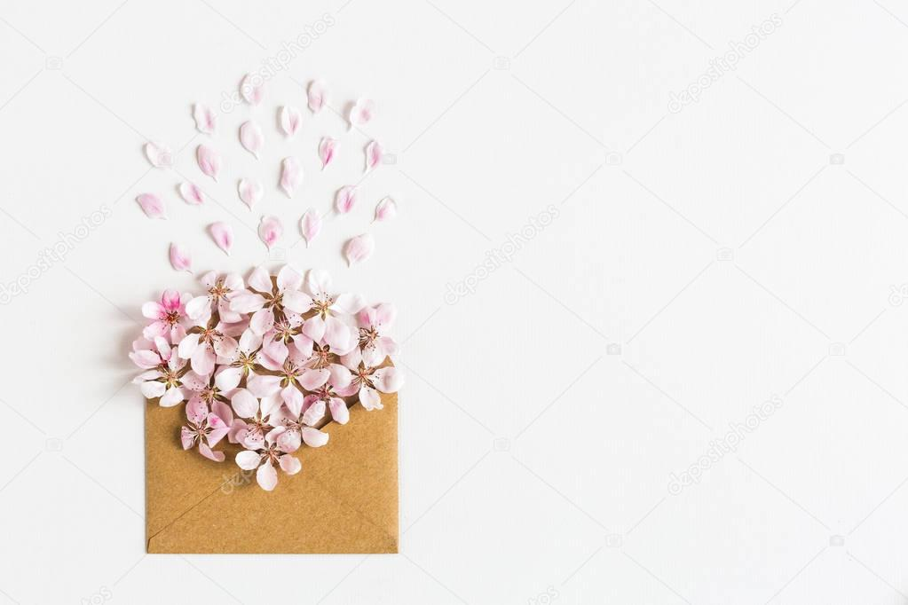 opened craft paper envelope full of spring blossom sacura flowers on white background.