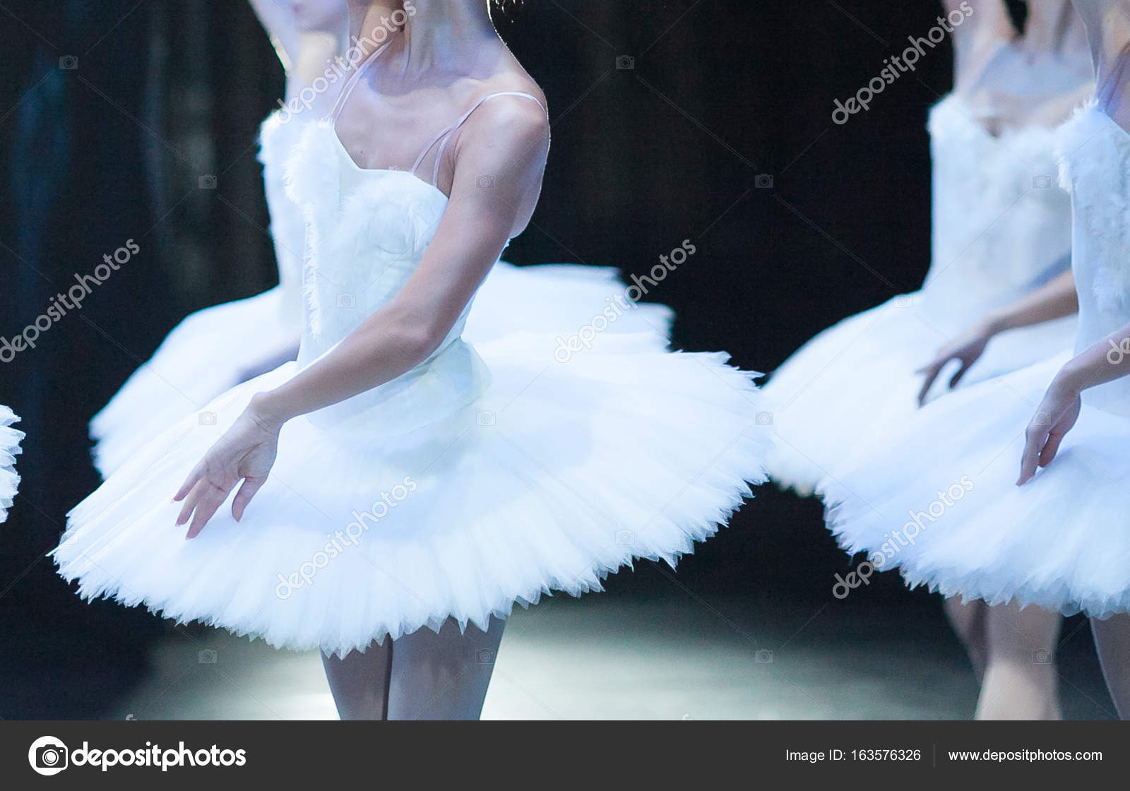 belleza, el ballet, el concepto de anatomía. delicadas líneas de ...