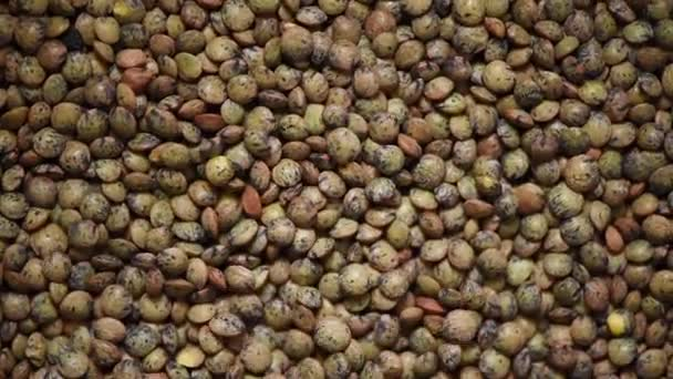 Raw organic marbled green lentils rotation texture. Food ingredient background. Top view