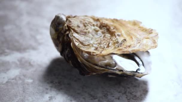 Geöffnete Auster auf grauem Marmor rotierendem Hintergrund. Fischteller