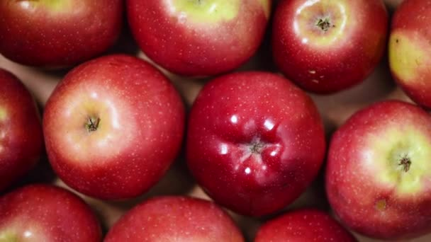 Fresh red apples on rotating background. Top view. Vegan and raw food concept.