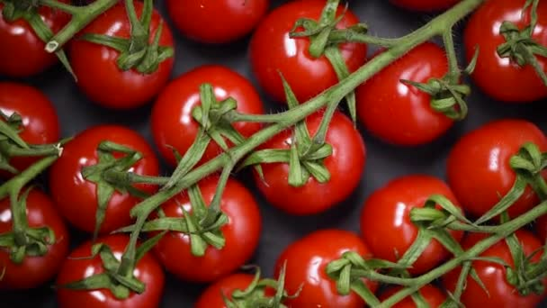 Kirschtomaten auf rotierendem Hintergrund. Ansicht von oben. Veganes und Rohkost-Konzept. Ein Bund frischer roter Tomaten