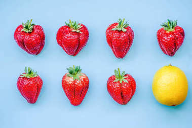 creative layout lemon and seven large strawberries on blue background in two lines top view