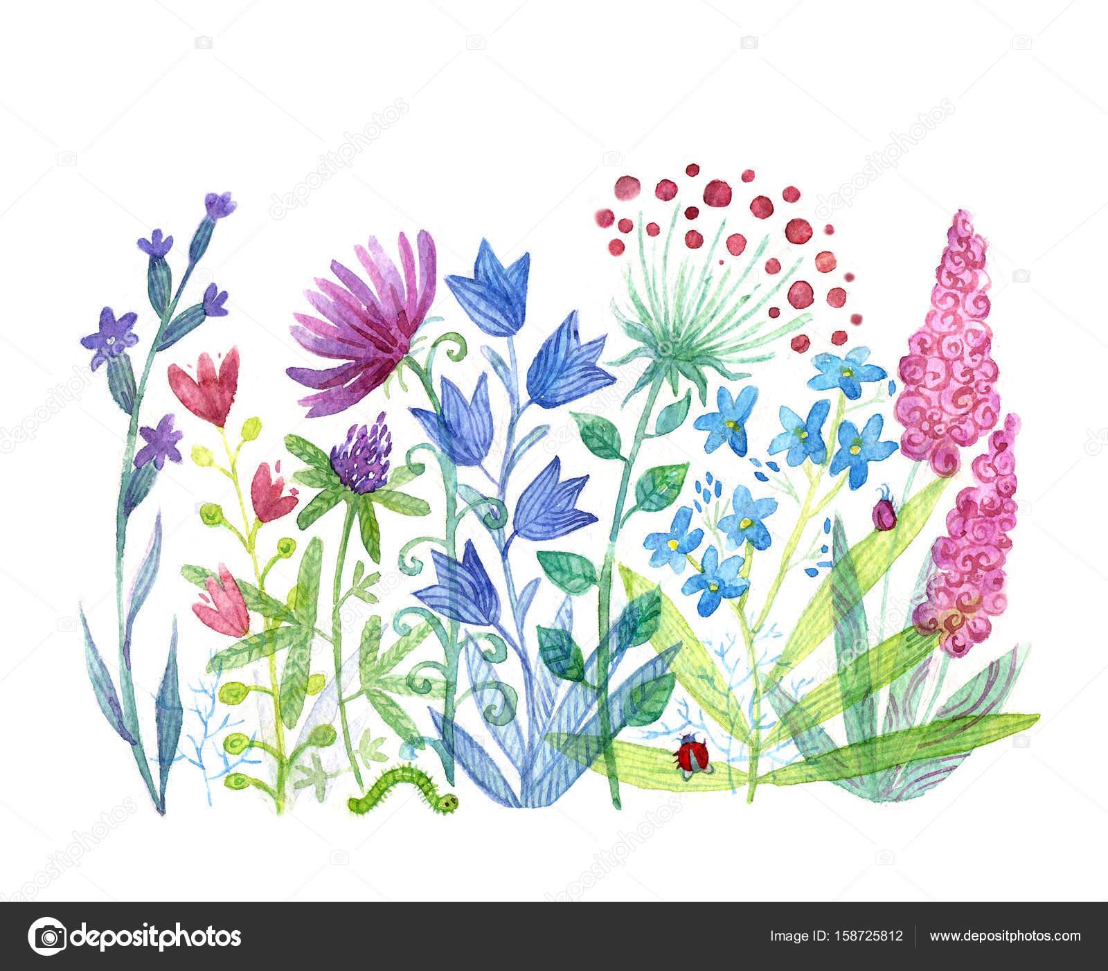 Bahar çiçekleri Boyama Stok Foto Ezgik113 At Gmailcom 158725812