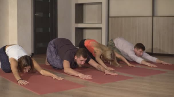 fitness csoport csinálás kobra póz a sorban a jóga