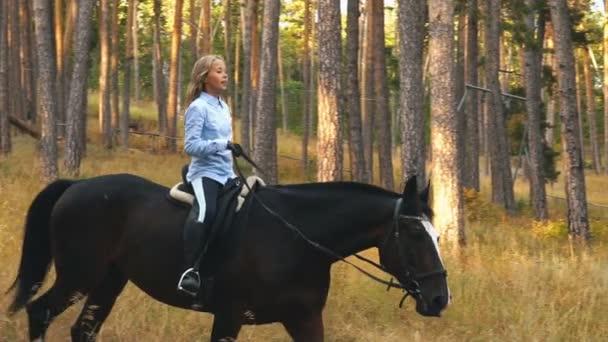 pferd reiter mädchen reiten in der nähe von wald
