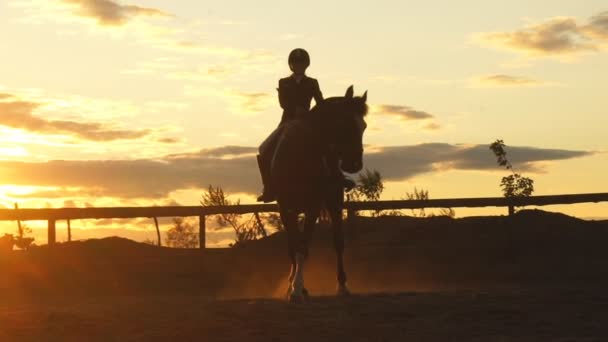 Silhouette of a woman riding a horse at sunset