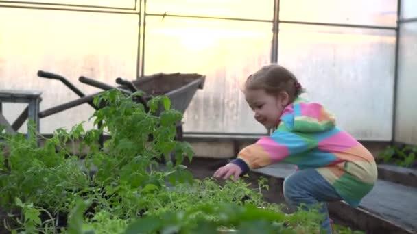 Girl farming plants in garden