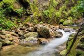 Bella cascata dalla montagna nella foresta pluviale. Umpang, Thailandia