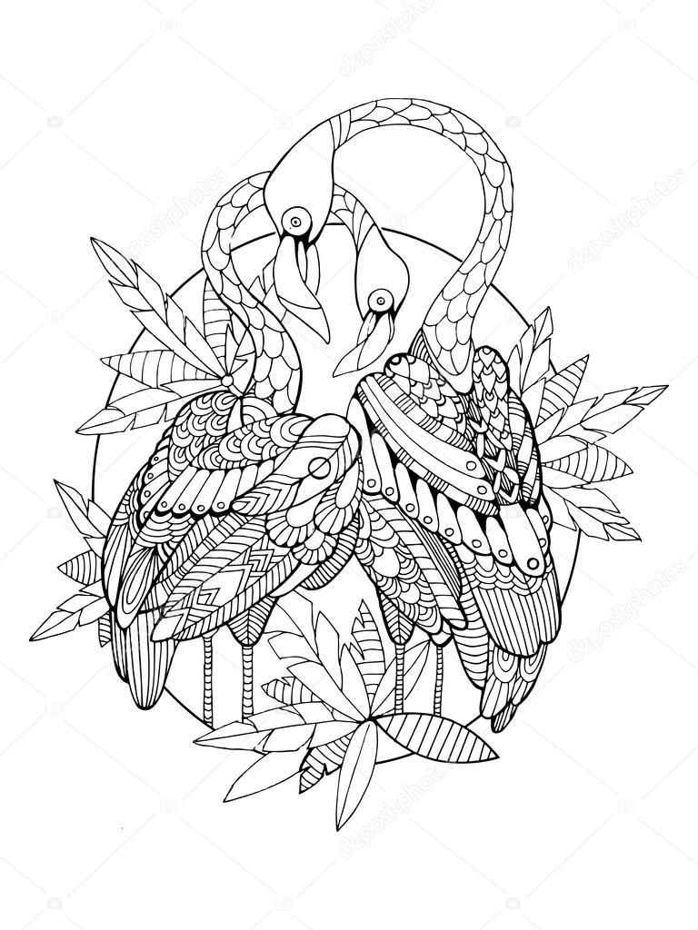 Livre De Coloriage Oiseau Flamant Pour Vecteur Adultes