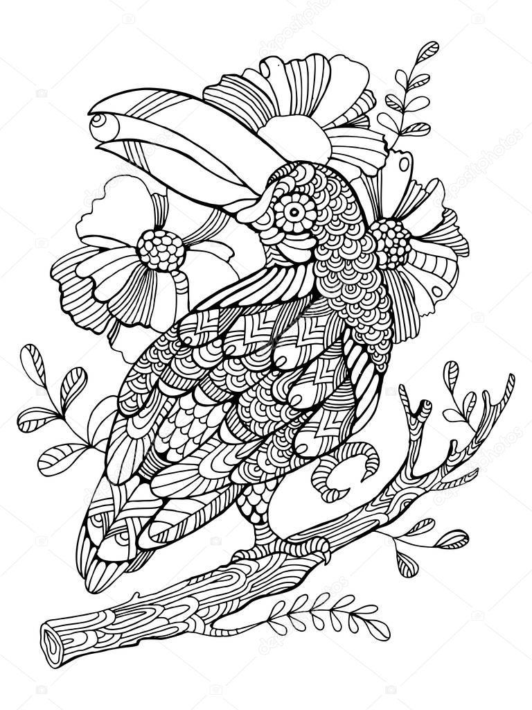 Aves de tucán para colorear libro de vectores adultos — Vector de ...