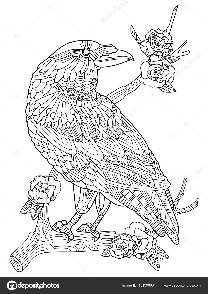 Karga Kuş Boyama Kitabı Yetişkin Vektör Için Stok Vektör