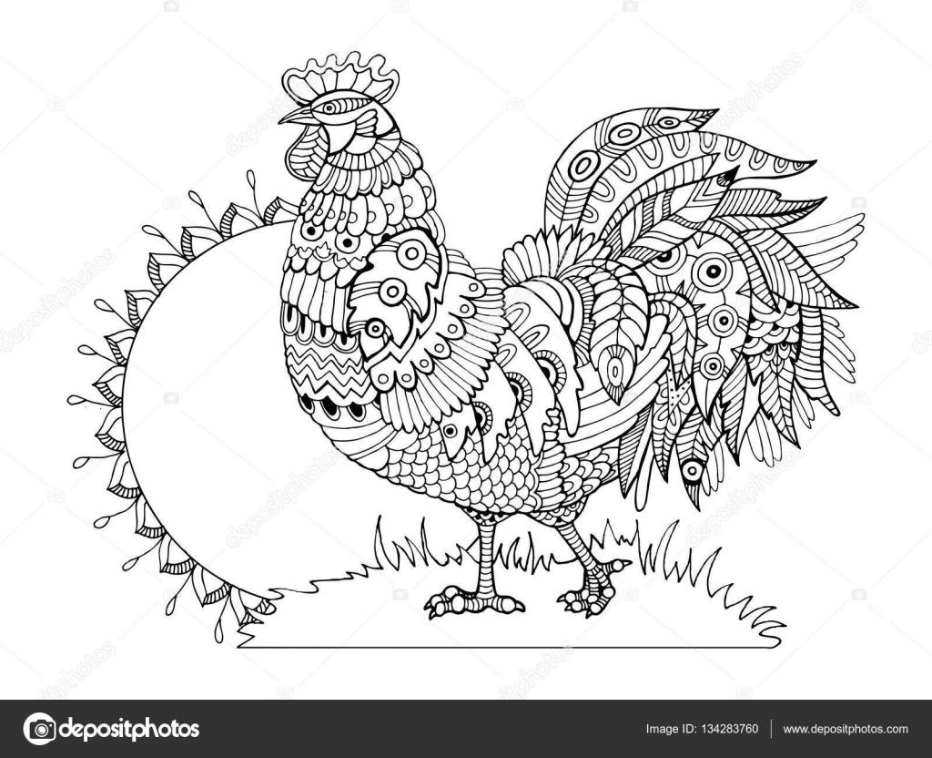 Coq coloriages pour vecteur adultes — Image vectorielle