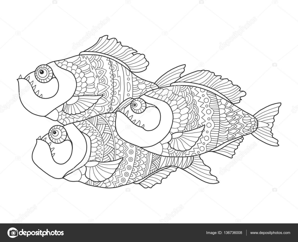 Piranha Coloring Book For Adults Vector Stock Vector