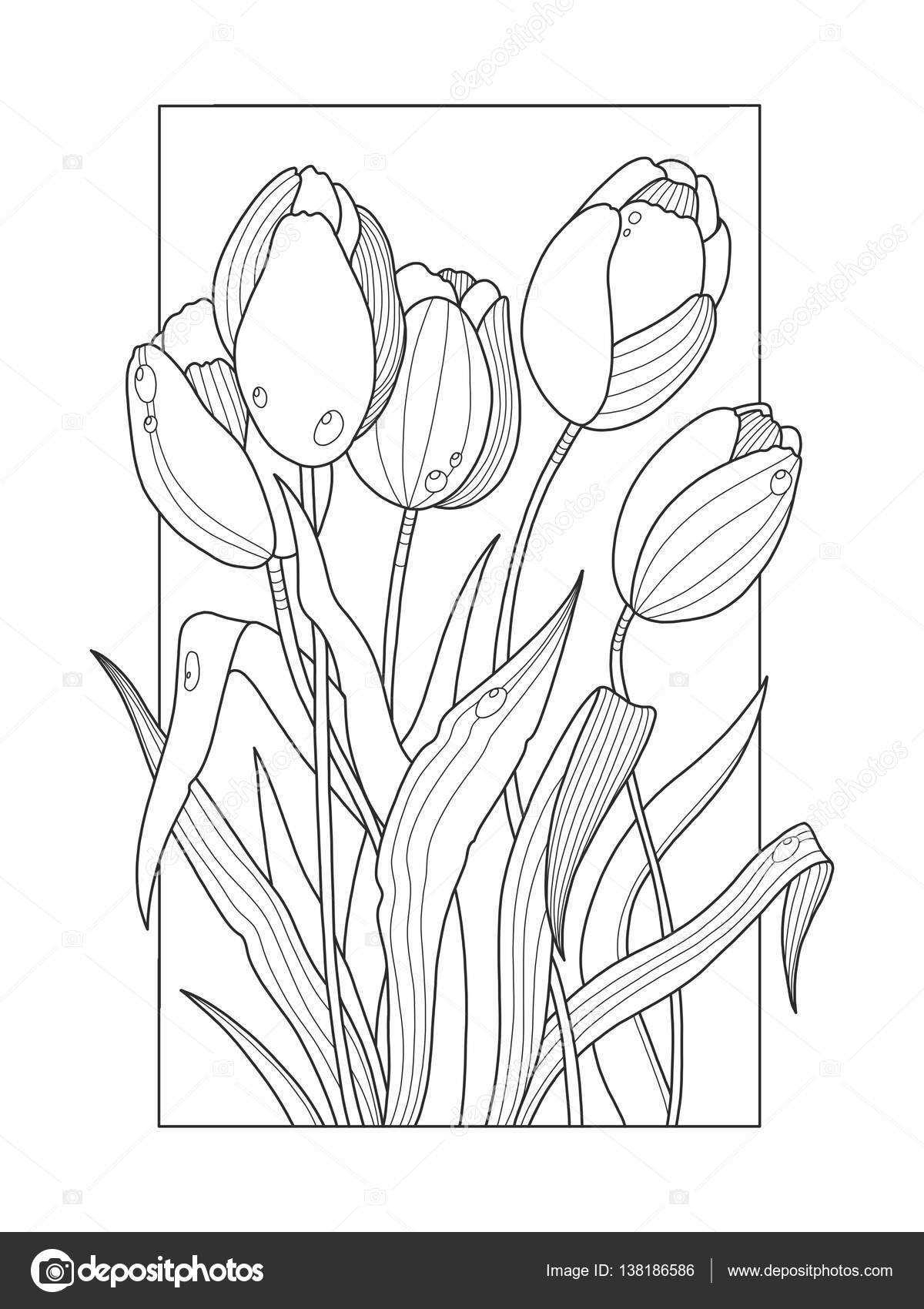 Tulipe dessins coloriage adulte - Coloriage tulipe ...