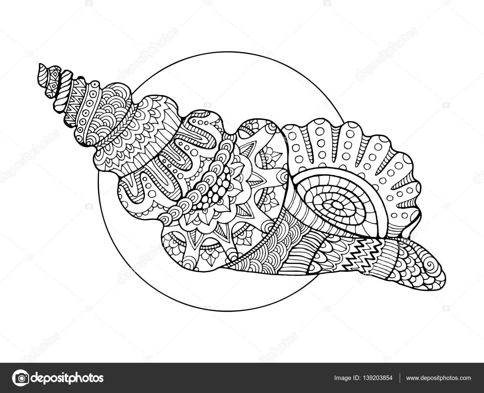 Kitap Vektör Illustration Boyama Deniz Kabuğu Stok Vektör