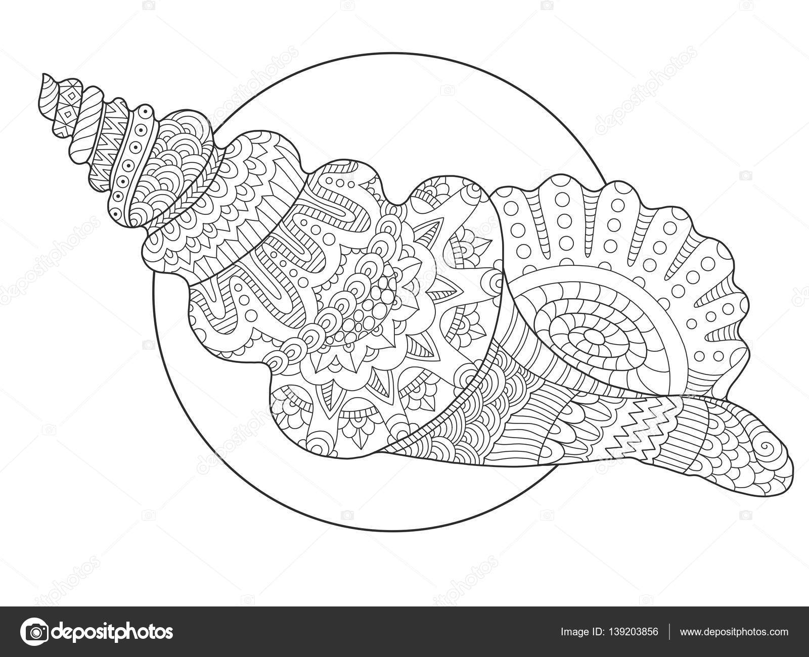 Inspirant Image Coquillage A Colorier