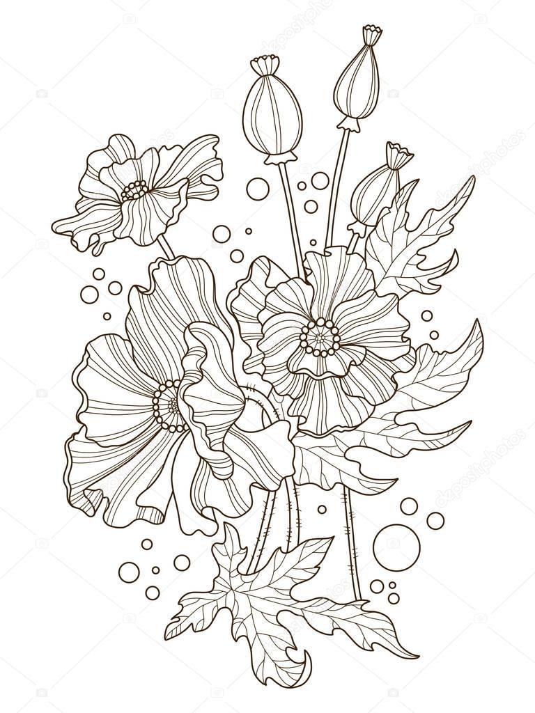 poppy bloemen kleurplaten boek vectorillustratie