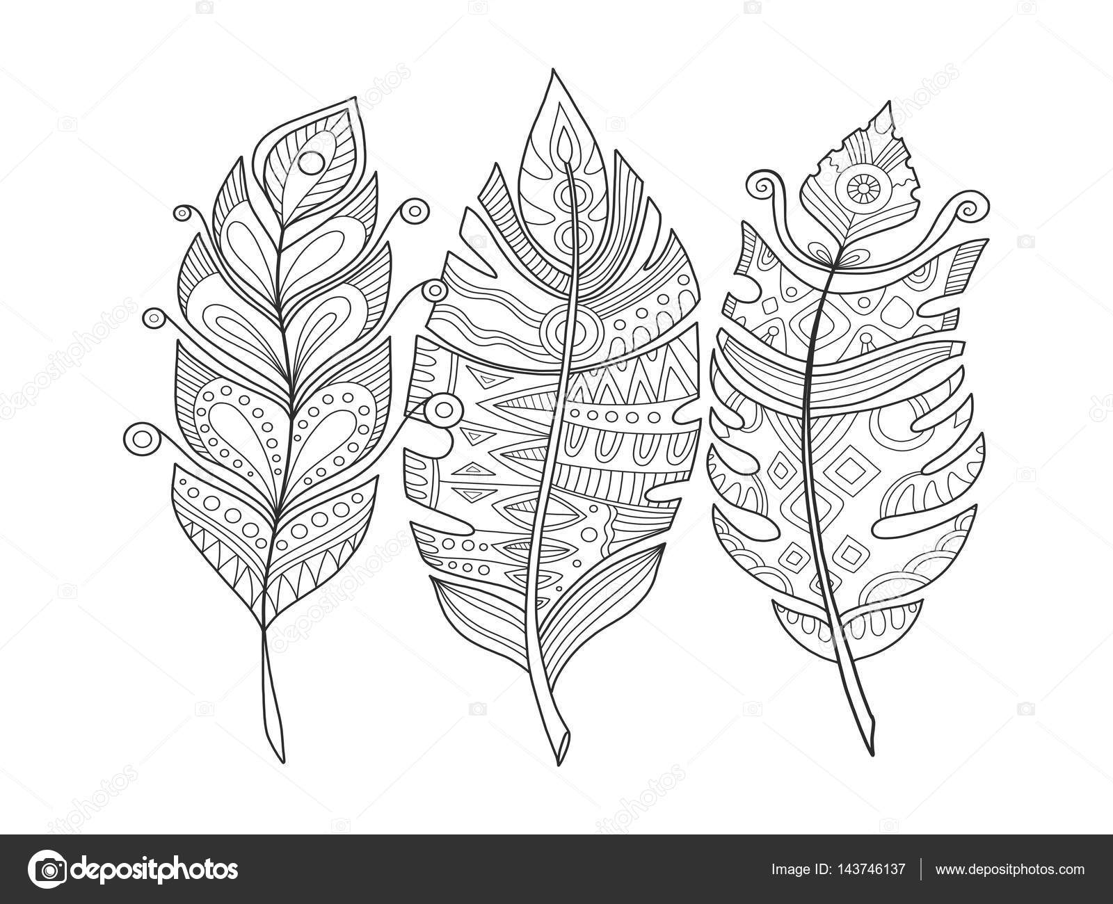 Imágenes Libros Con Plumas Para Dibujar Plumas Para