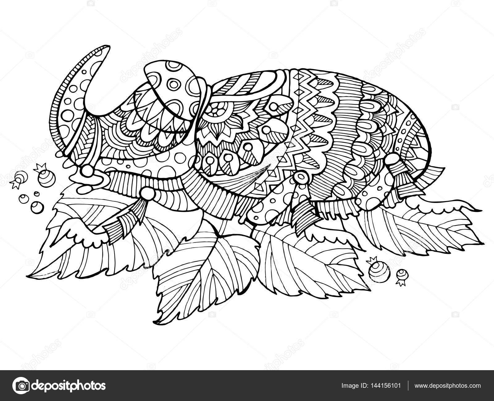 Insecto Escarabajo rinoceronte para colorear vector libro — Archivo ...